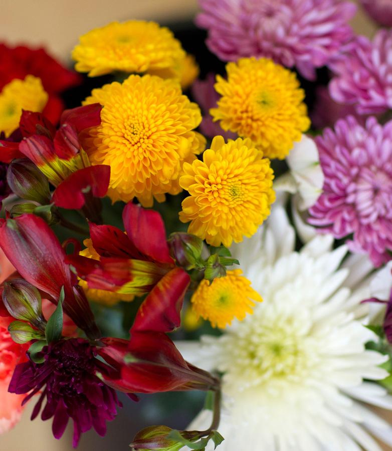 Best Value Cut Flowers